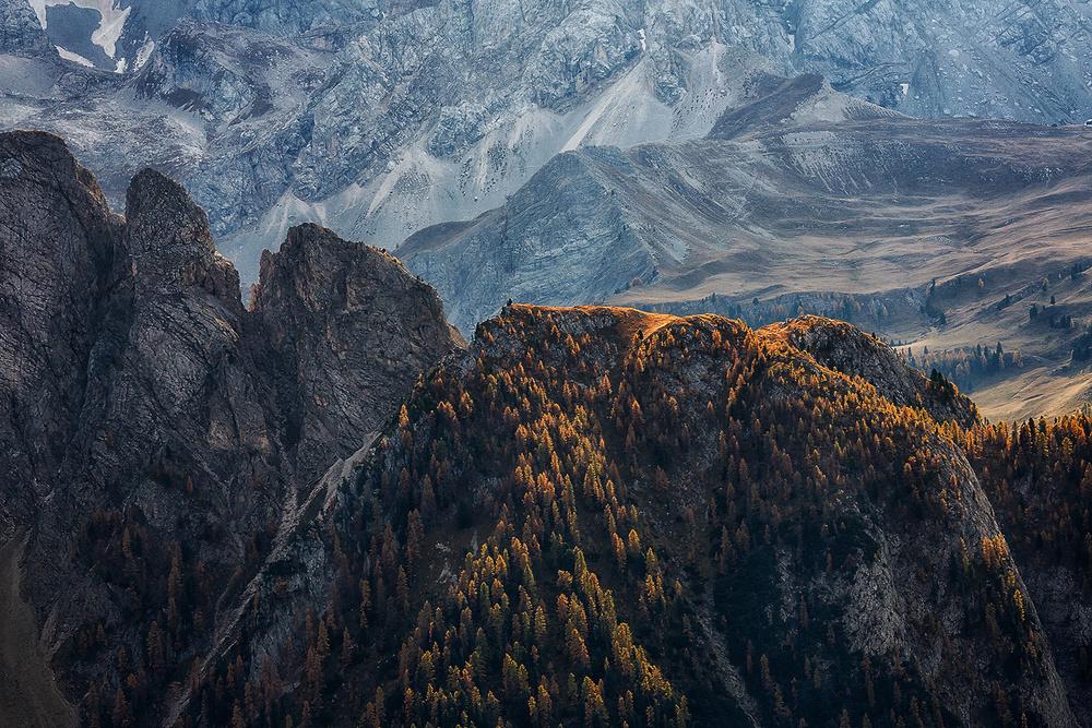 A piece of fine art art photography titled Light of Autumn by Uschi Hermann