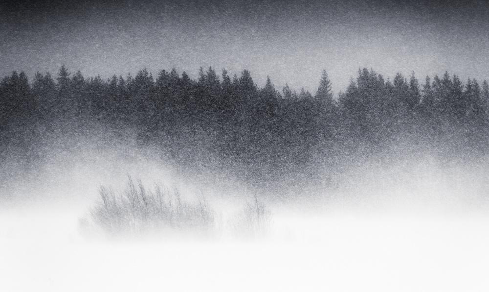A piece of fine art art photography titled Blowing Snow by Joni Niemelä