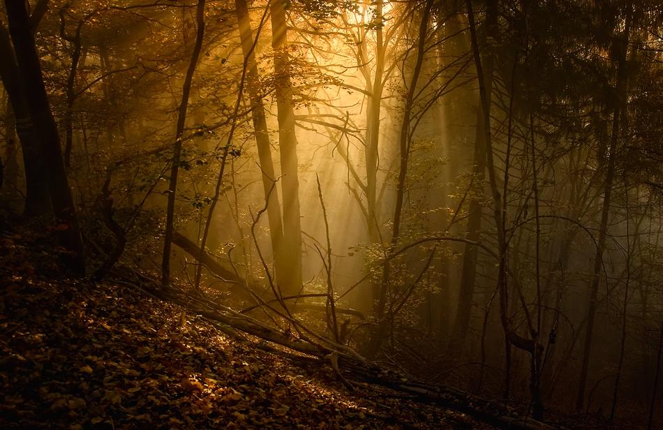 A piece of fine art art photography titled Daybreak by Norbert Maier