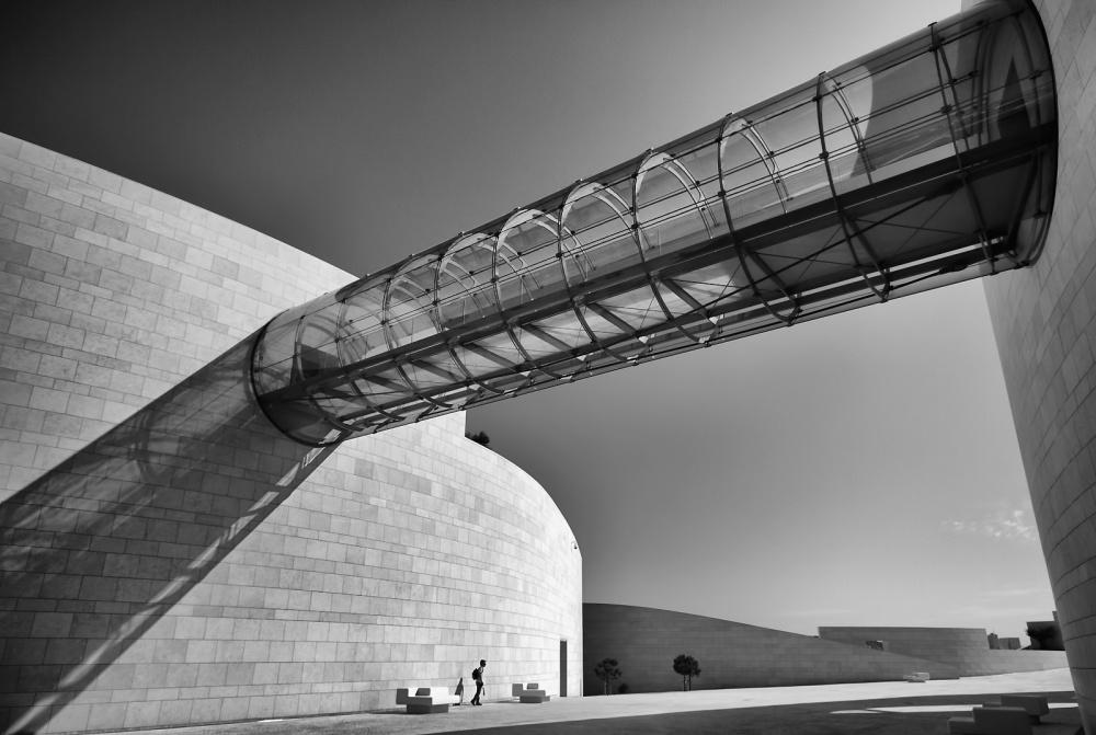 A piece of fine art art photography titled  New World by Fernando Alves