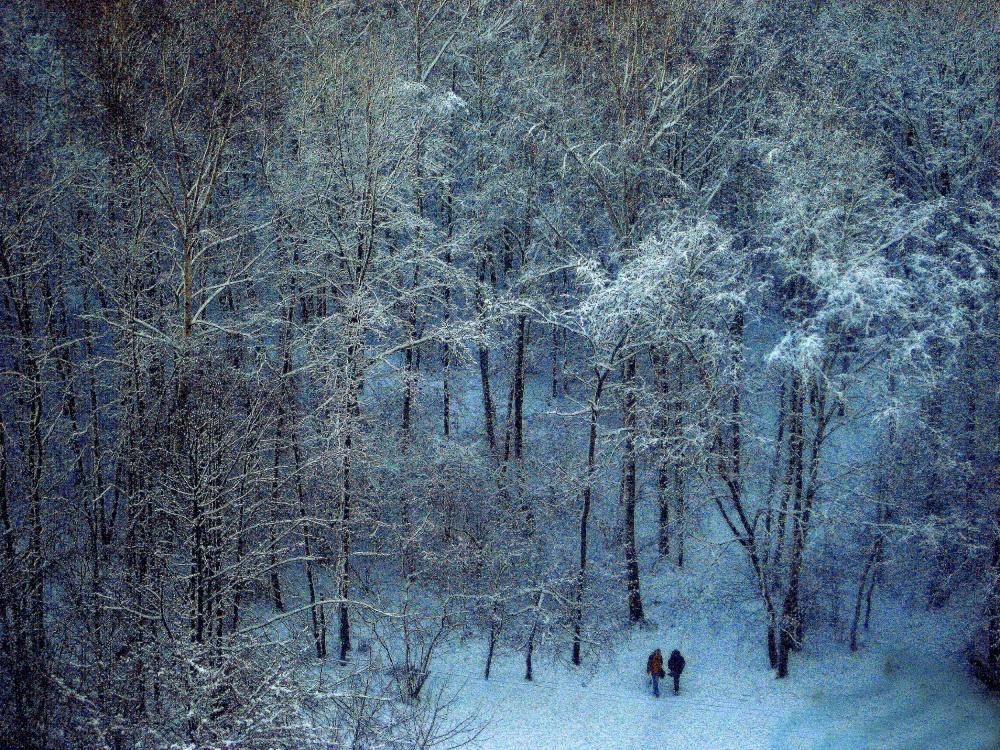 A piece of fine art art photography titled Blue Winter by Vladimir Asriyan
