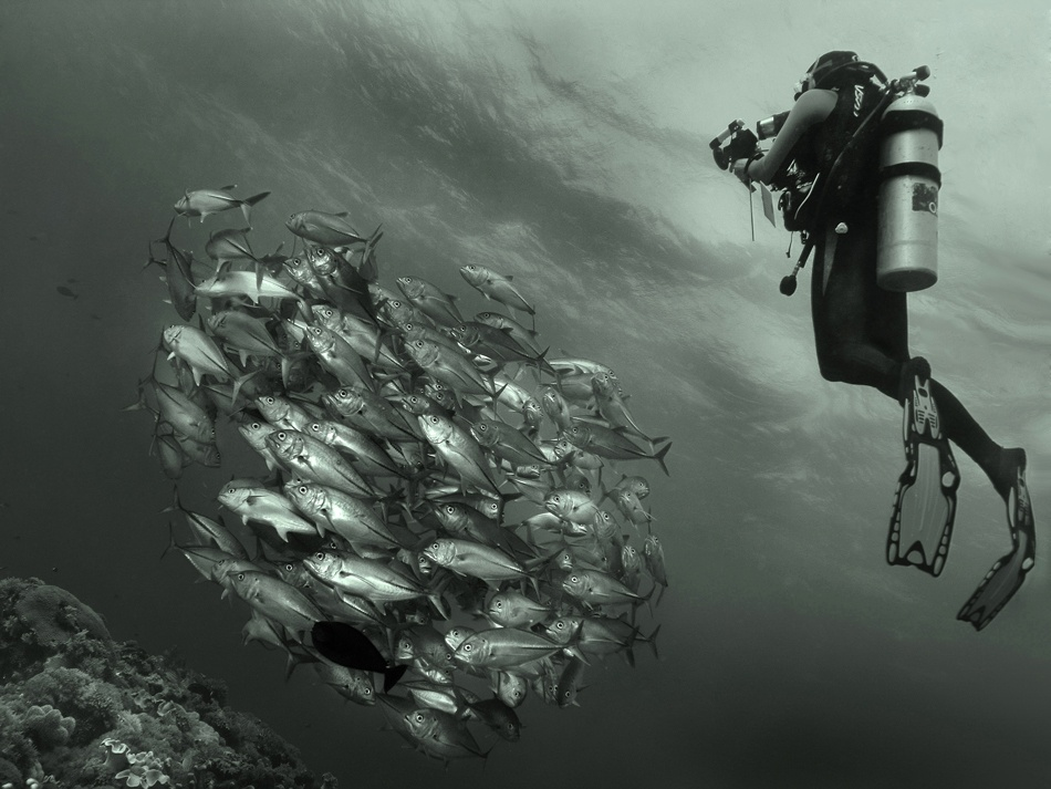 A piece of fine art art photography titled Underwater Photographer and His Model by Nickolya Zavarika