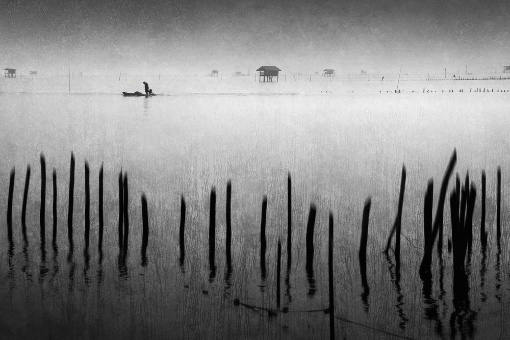 View this piece of fine art photography titled Melody of the wetland by Gilcan Mete