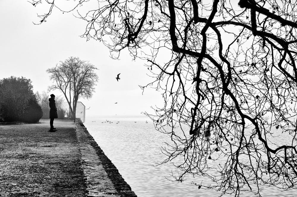 A piece of fine art art photography titled Un Matin D'hiver - 2 - by Eric Monvoisin