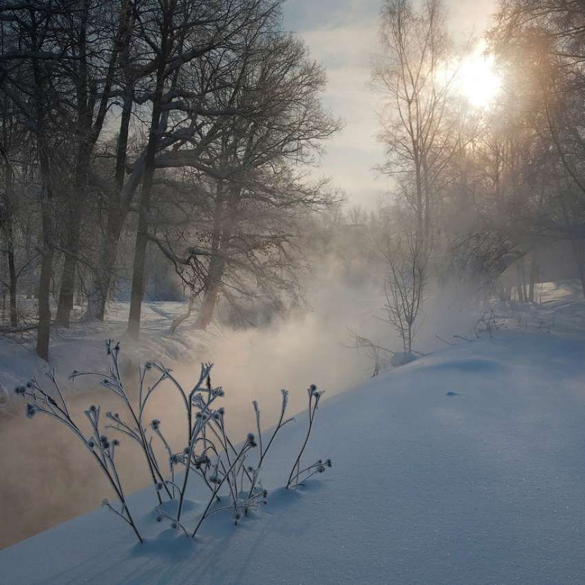 beautiful morning, a misty morning