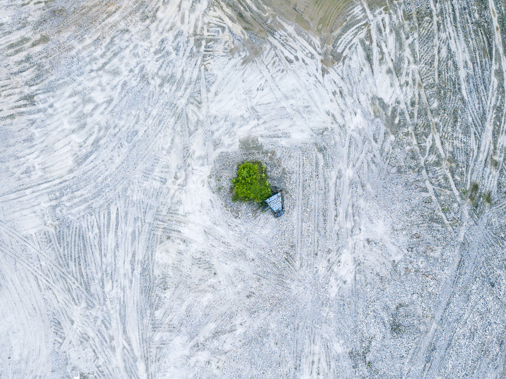 A piece of fine art art photography titled The Last Tree and Trash Can by Zhou Chengzhou