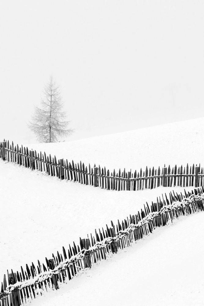 Fences: Playing with lines