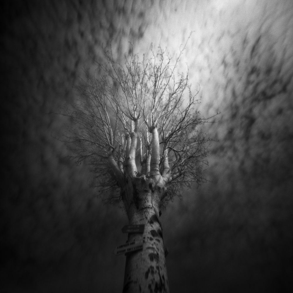 A piece of fine art art photography titled Lost by Raul Pires Coelho