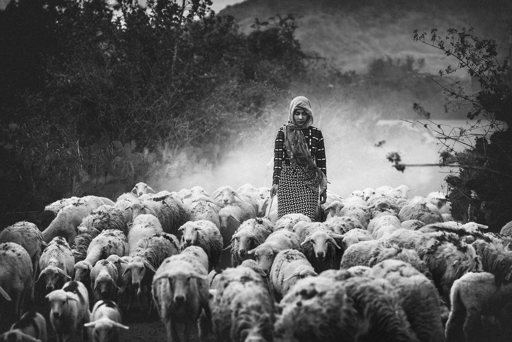 A piece of fine art art photography titled Shepherd by Patrick Foto