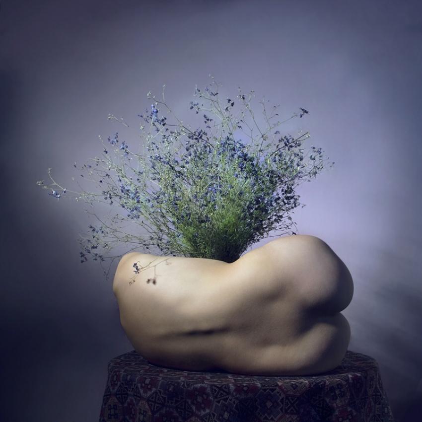 A piece of fine art art photography titled Vase by Anca Cernoschi