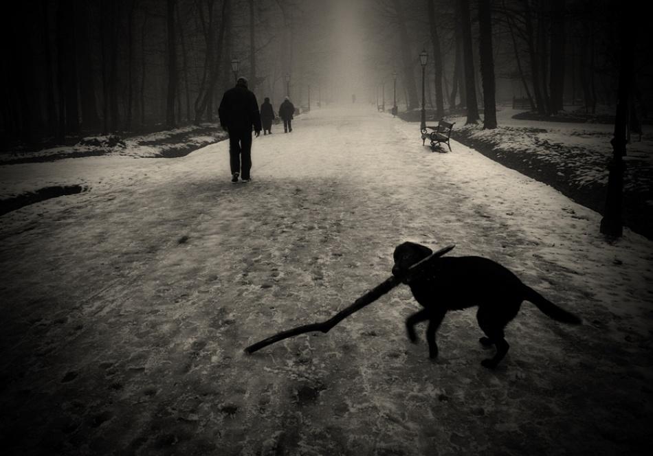 A piece of fine art art photography titled Maksimir by Sandra Štimac