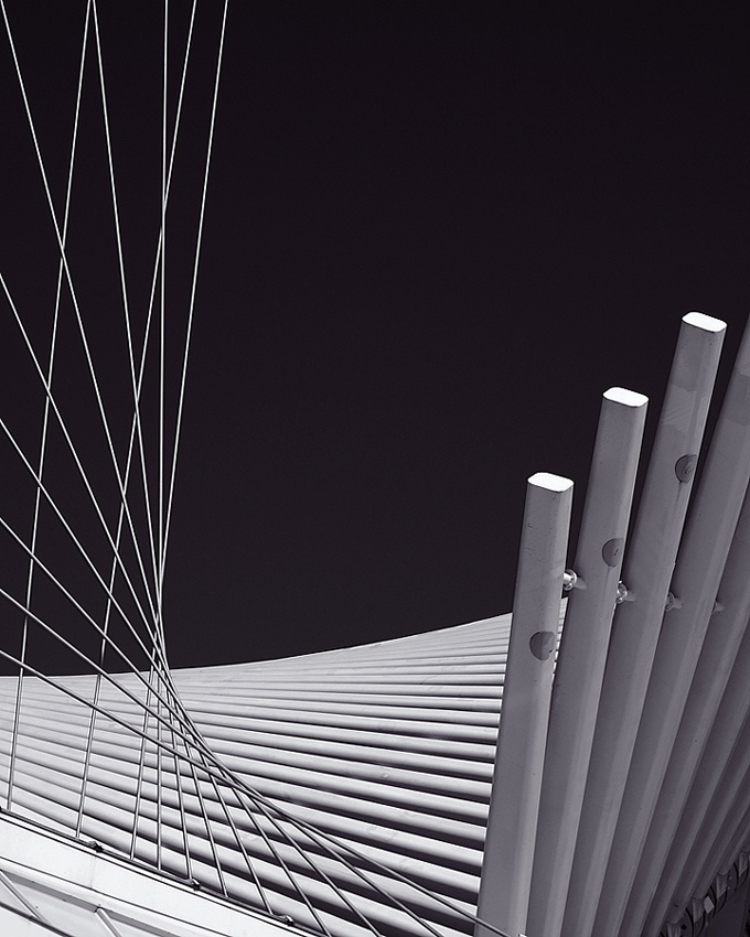 A piece of fine art art photography titled Wings by Justin Schmitt
