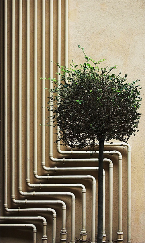 A piece of fine art art photography titled Pipes by Andrea Mercalli