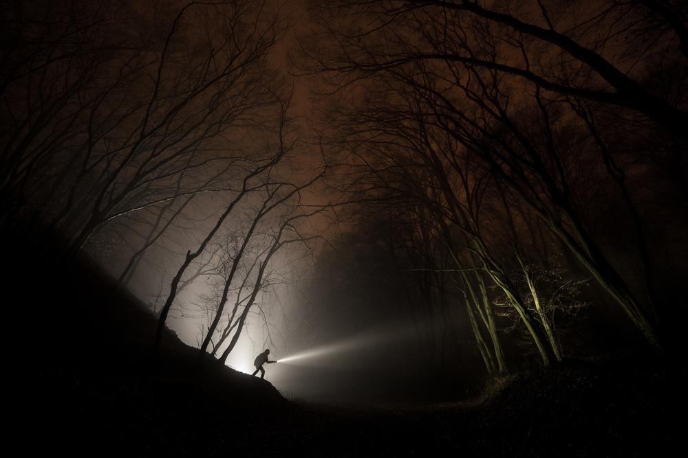 Night explorer