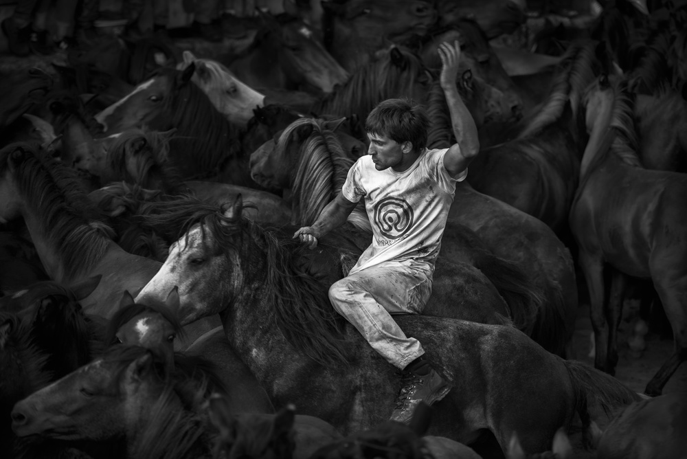 A piece of fine art art photography titled The Wild Tamer by Alfonso maseda varela