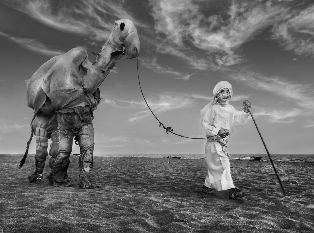 A piece of fine art art photography titled Camel Driver by Alisaeedi