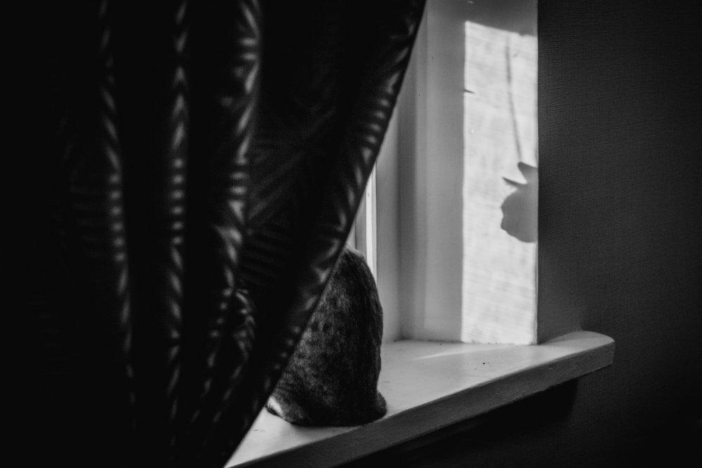 A piece of fine art art photography titled Head by Olessya Mikhailova