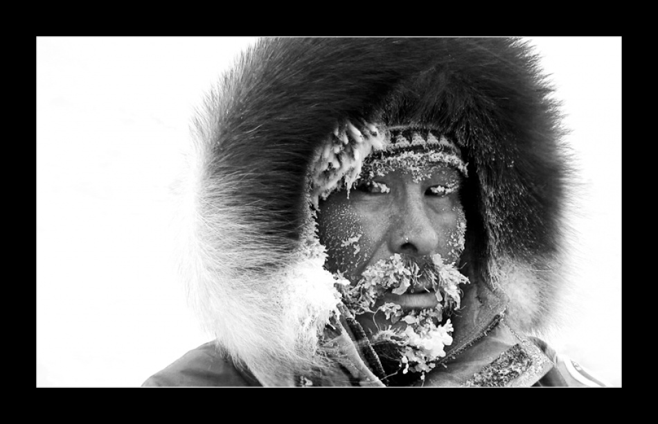 A piece of fine art art photography titled Cold Stare by  Mdavies
