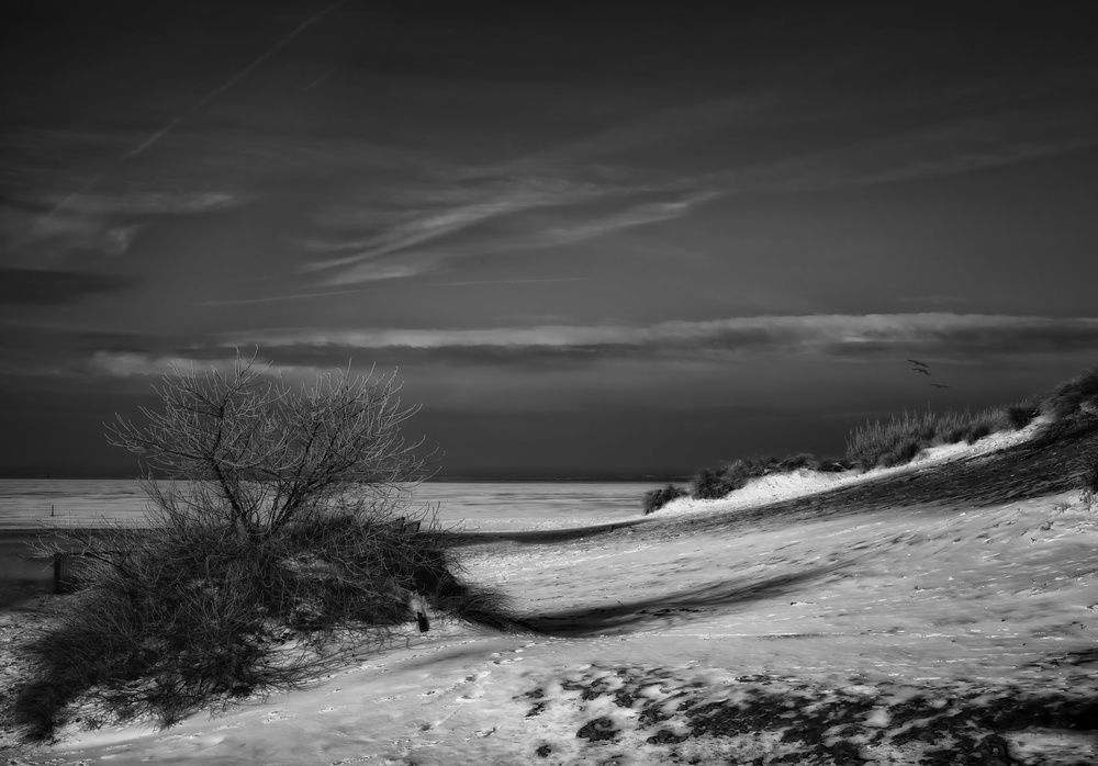 A piece of fine art art photography titled Solitary Snowy Winter Beach by Yvette Depaepe