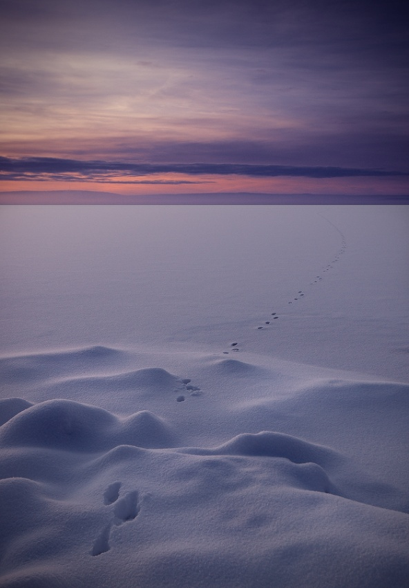 A piece of fine art art photography titled In Tho the Nowhere by Mika Sjöman