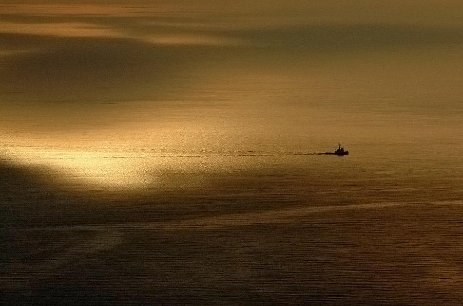 A piece of fine art art photography titled Sea of Gold by Sandi Gorkic