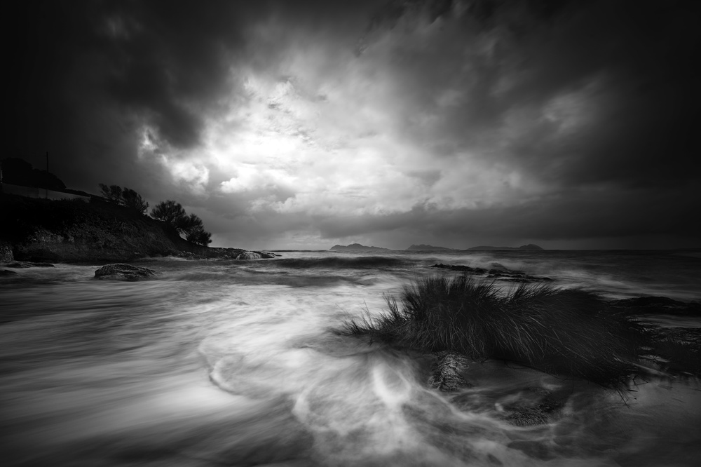 A piece of fine art art photography titled Rushes In the Sea by Santiago Pascual Buye