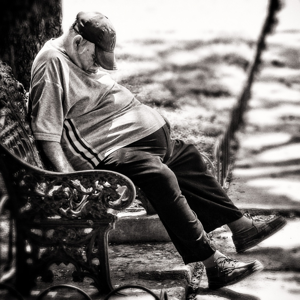 A piece of fine art art photography titled Hot Afternoon Nap by Tom Baetsen - xlix.nl