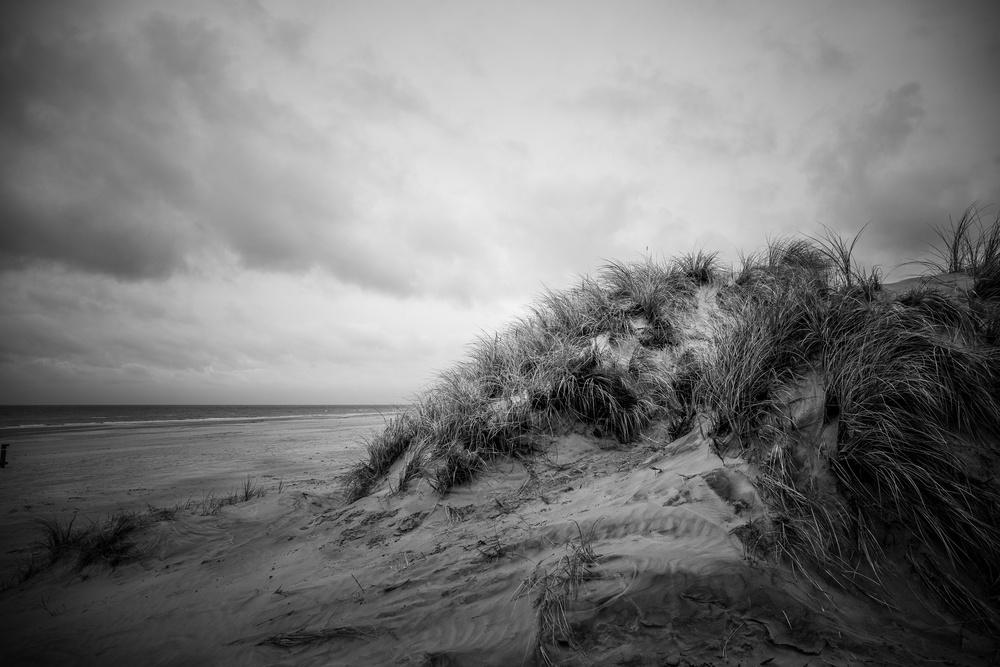 Rainy day dune