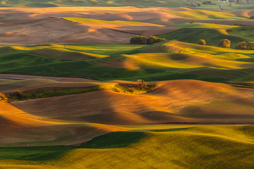 A piece of fine art art photography titled The Eye of the Palouse by Francois Roughol