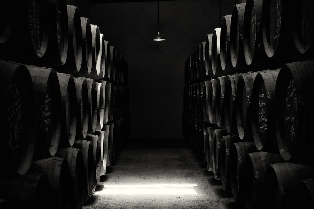 A piece of fine art art photography titled Vinery by Hans-Wolfgang Hawerkamp