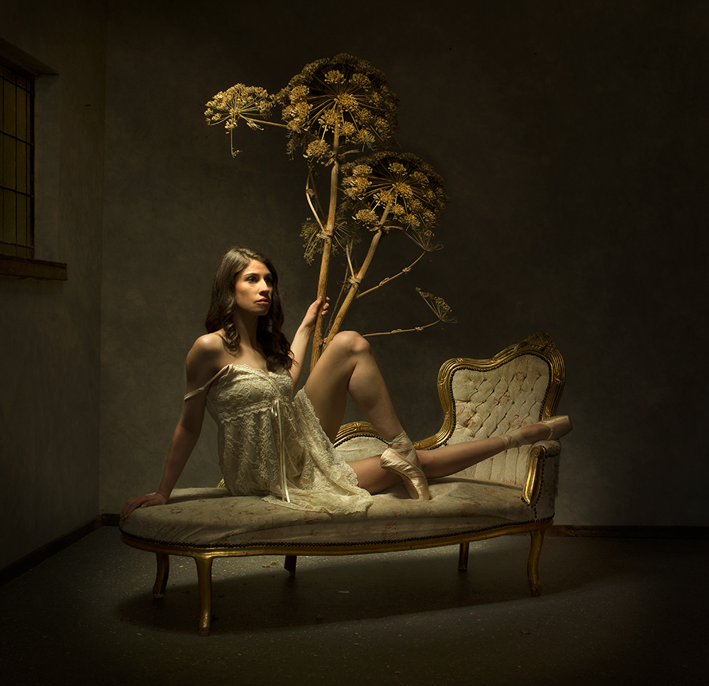 A piece of fine art art photography titled Tree by Peter Kemp