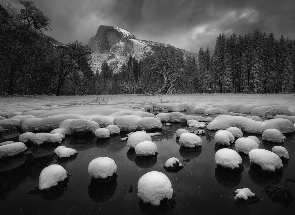 A piece of fine art art photography titled Valley Cotton Balls by Qiang Huang