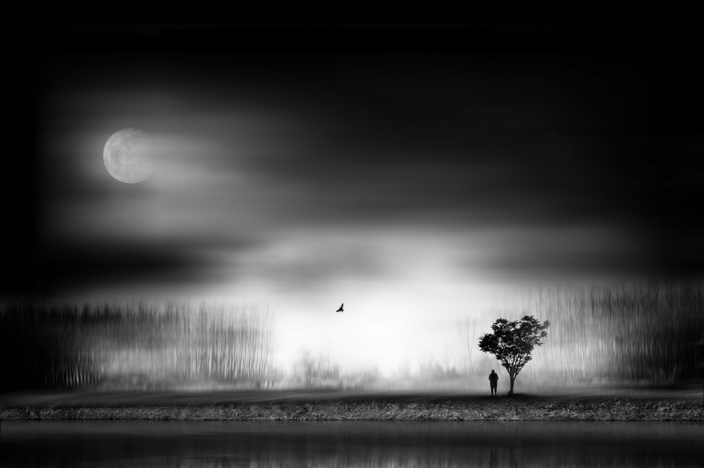 A piece of fine art art photography titled The Moon by Sherry Akrami