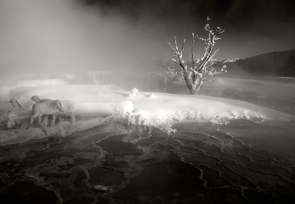 A piece of fine art art photography titled Mammoth Hot Springs, 2009 by Jay Wesler