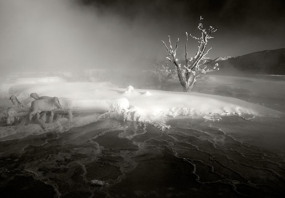 Mammoth Hot Springs, 2009