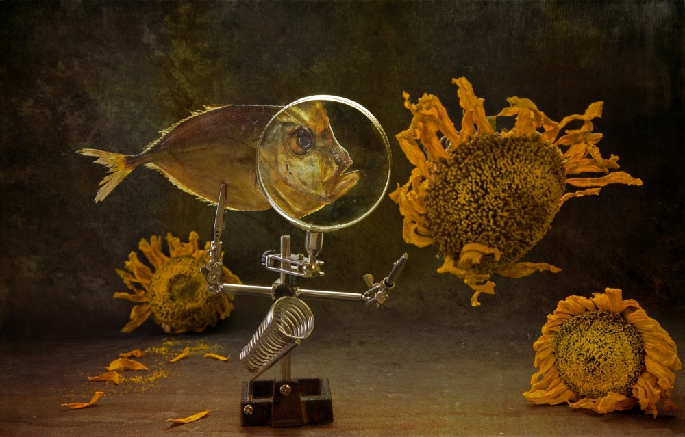 A piece of fine art art photography titled Fish and Falling Sunflowers by Brig Barkow