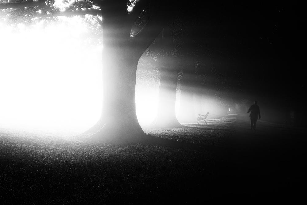 A piece of fine art art photography titled Bent by Ulrike Eisenmann