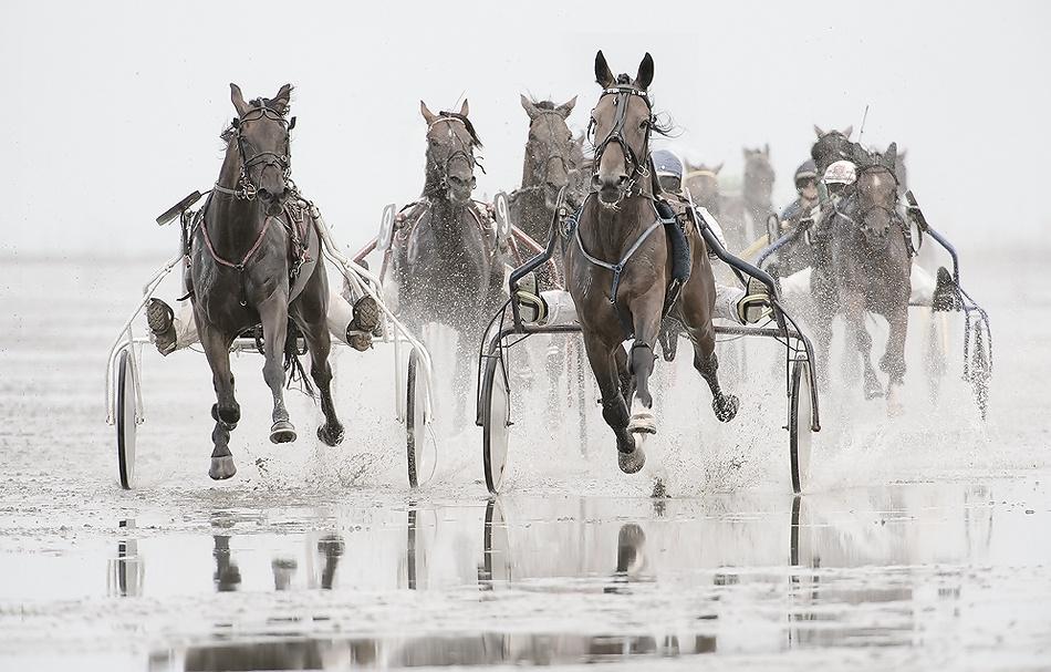 A piece of fine art art photography titled Trotting Race On Beach by Paula Graham