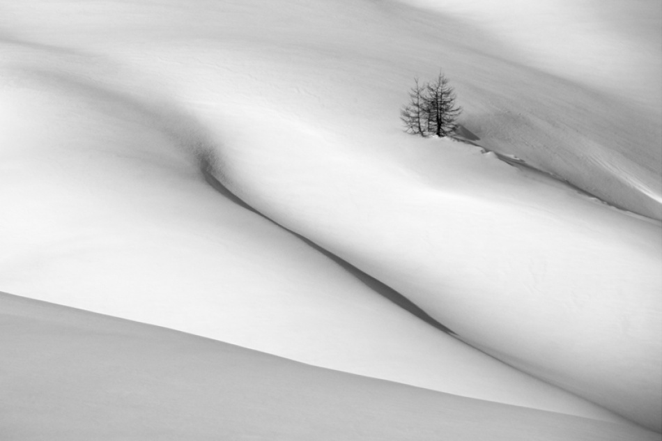A piece of fine art art photography titled Symphony In White  by Dare Turnsek
