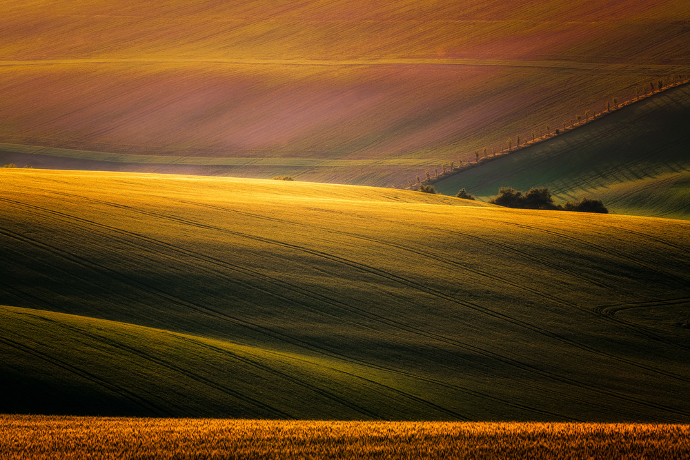 A piece of fine art art photography titled Sunset Palette by Marek Boguszak