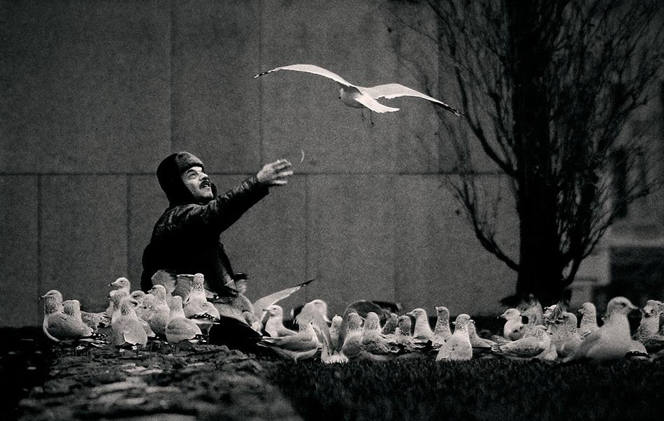 A piece of fine art art photography titled L'Homme Et Les Oiseaux by Mario Jean