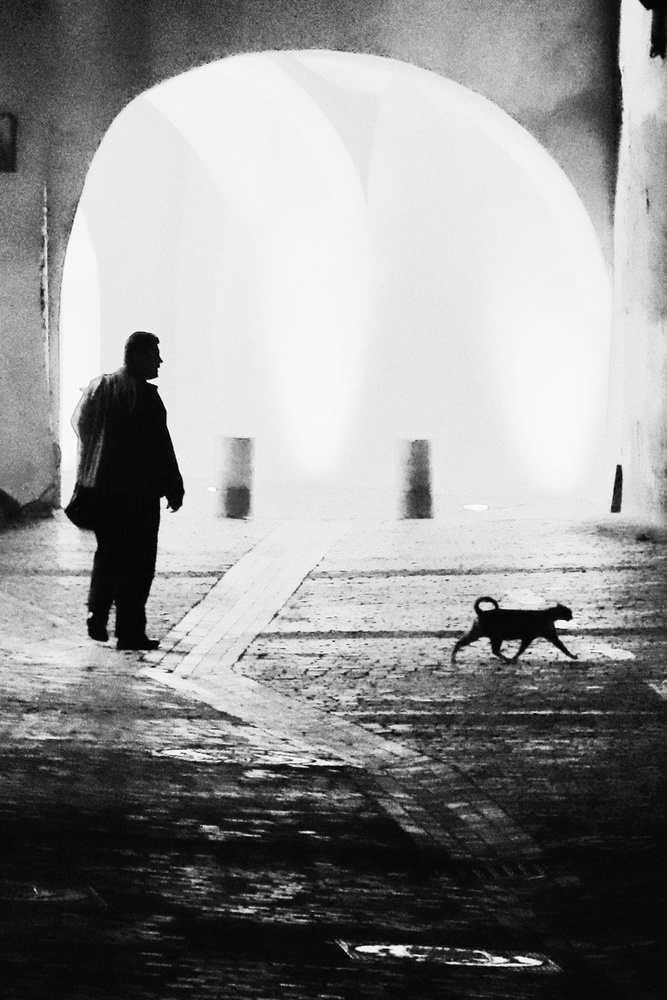 A piece of fine art art photography titled The Visitor by Marchevca Bogdan