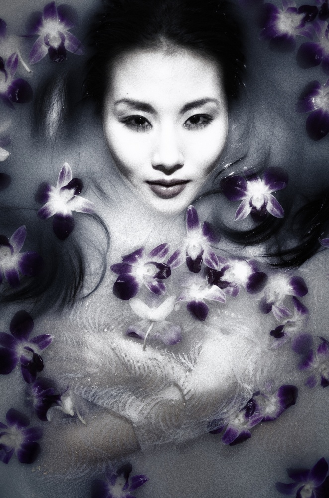 A piece of fine art art photography titled Flower by shinichiro yamada