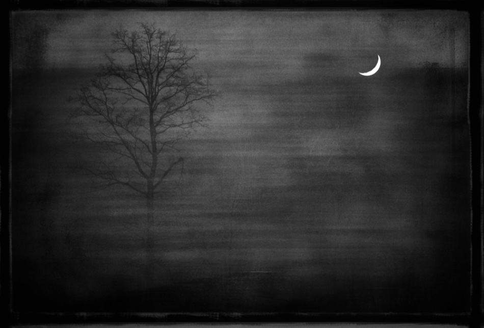 A piece of fine art art photography titled Talking to Moon and Tree by Barbara