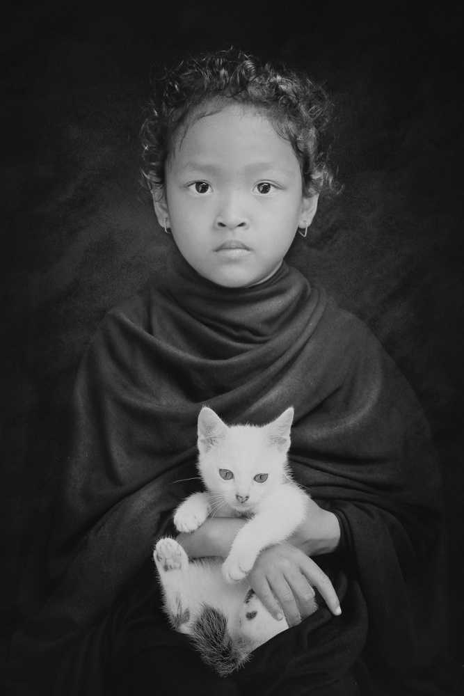 A piece of fine art art photography titled My White Cat by jay satriani