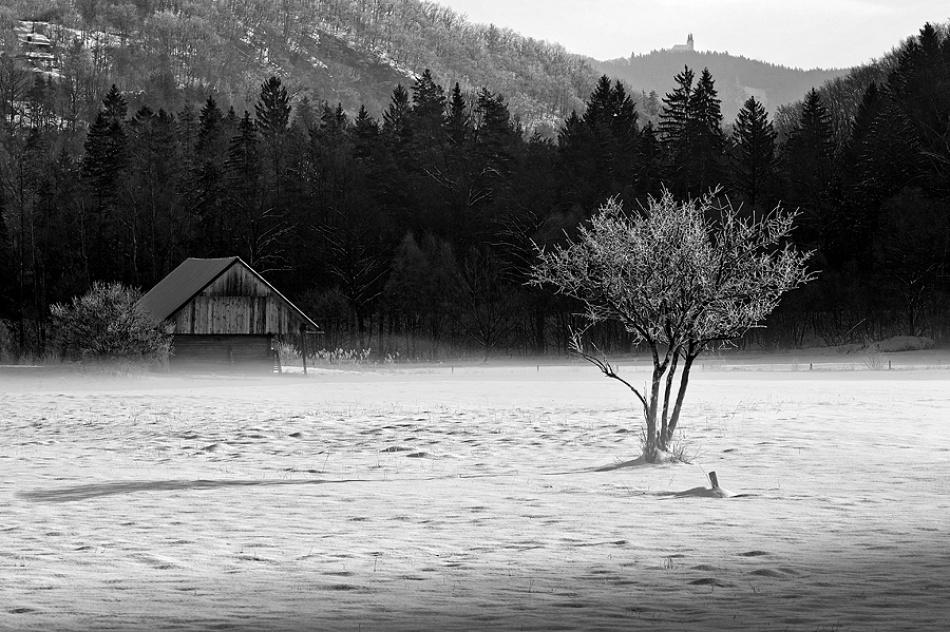 A piece of fine art art photography titled Winter by Jure Kravanja