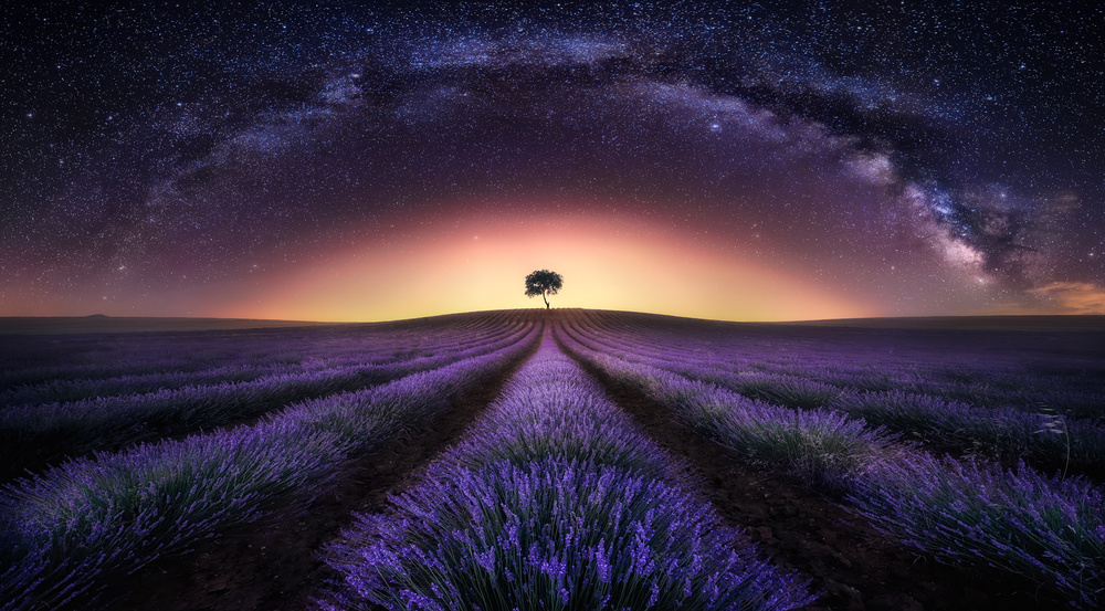 A piece of fine art art photography titled The Lavenders Field and Milky Way by Jesús M. García