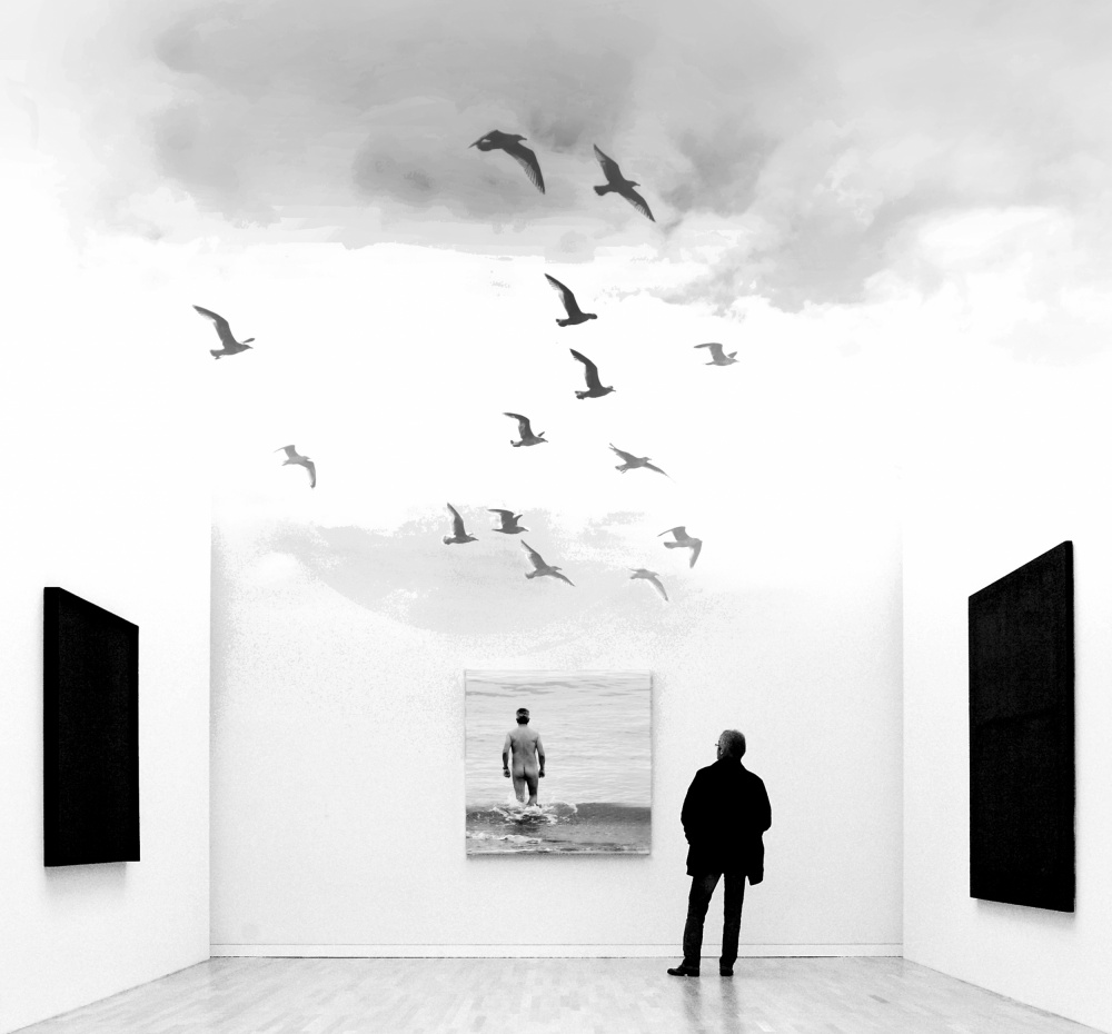 A piece of fine art art photography titled Free As a Bird by Marc Apers