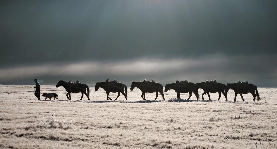 Horse caravan in Rodopa mountains