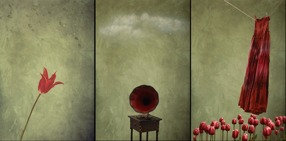 A piece of fine art art photography titled Another Story About Me by Mihaela Gradinaru